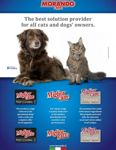 The best solution provider for all cats and dog's owners