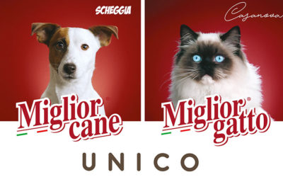 15 MORANDO UNICO Gatto – 17feb20 MixAir Radio